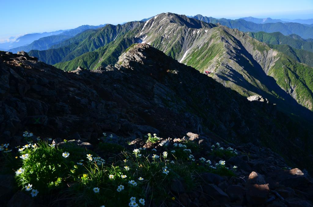 【北岳】2011年07月10日 06:46撮影