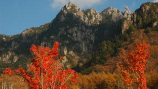 【みずがき山自然公園】2007年11月03日 15:29撮影
