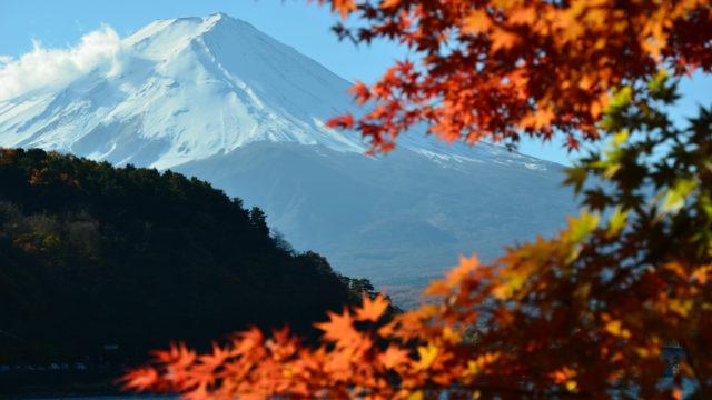 【河口湖】2012年11月18日 09:22撮影
