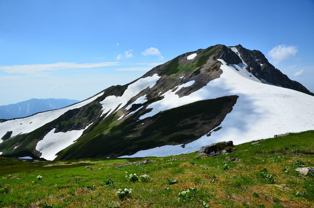【白馬岳】2014年07月12日 14:32撮影